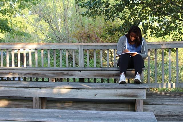 A student working on a journal entry for creative writing. Brittany Reeves
