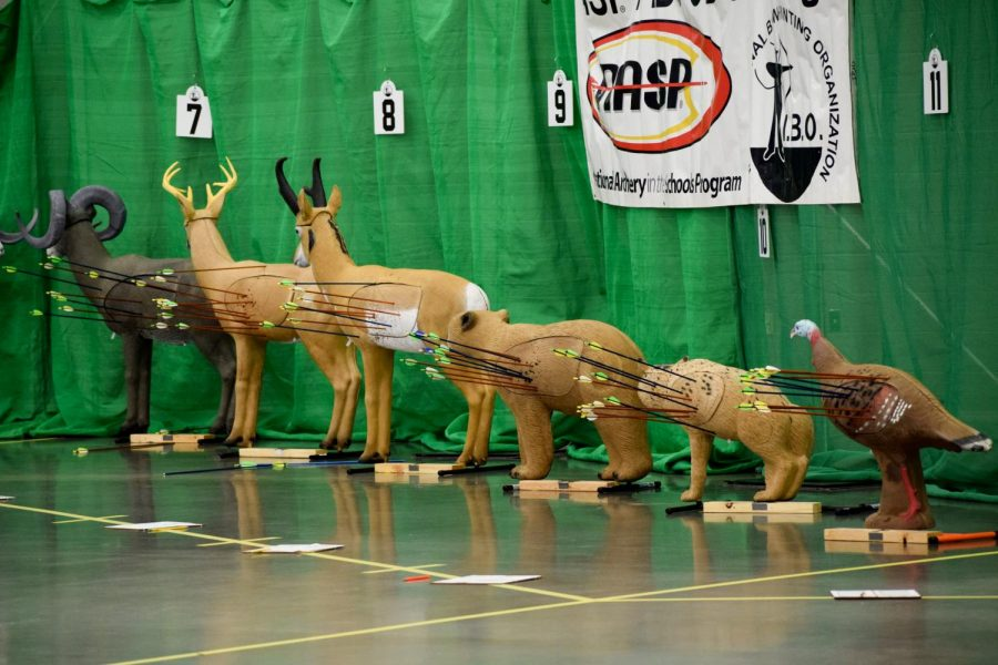 Archers participated in the IBO 3D Challenge, where they shoot at foam animal targets and score is determined by where the arrow lands on the animal's body.