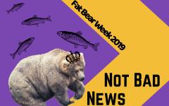 Not Bad News- Fat Bear Week