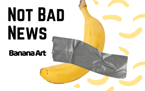 Not Bad News- Banana Art